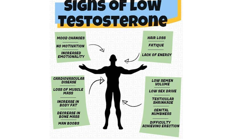 Low Testosterone Expert